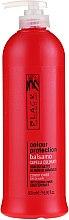 Düfte, Parfümerie und Kosmetik Farbschützender Conditioner mit Sonnenblumenkernextrakt - Black Professional Line Colour Protection Conditioner
