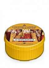 Düfte, Parfümerie und Kosmetik Duftkerze Autumn Harvest - Kringle Candle Autumn Harvest