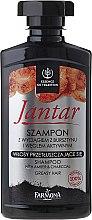 Düfte, Parfümerie und Kosmetik Entgiftungsshampoo mit Aktivkohle gegen Seborrhoe - Farmona Jantar Detoxifying Shampoo With Active Charcoal