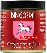 Düfte, Parfümerie und Kosmetik Pferdebalsam mit alpinen Kräutern - BingoSpa Ointment Horse With Alpine Herbs