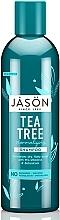 Düfte, Parfümerie und Kosmetik Normalisierendes Shampoo Teebaum für juckende Kopfhaut - Jason Natural Cosmetics Tea Tree Treatment Shampoo