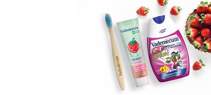Beim Kauf eines Produktes der Marke Vademecum erhältst Du eine Kinder-Zahnbürste nach Wahl geschenkt: rosa, blau oder weiß