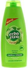 Düfte, Parfümerie und Kosmetik Shampoo für fettiges Haar mit Brennnessel und Ginseng - Erba Viva Shampoo for Oily Hair