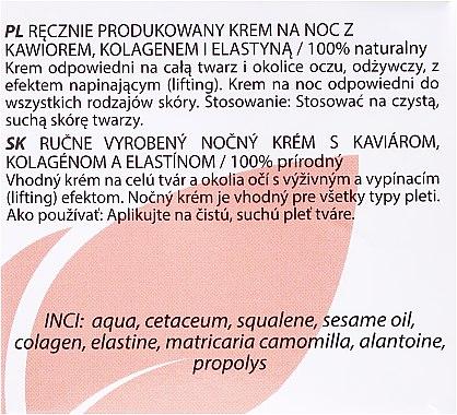 Handgemachte Nachtcreme mit Kaviar, Kollagen und Elastin - Hristina Cosmetics Handmade Night Cream — Bild N3