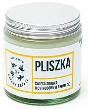 Düfte, Parfümerie und Kosmetik Duftkerze Bachstelze - Cztery Szpaki