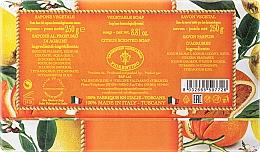 Naturseife Citrus - Saponificio Artigianale Fiorentino Citrus Scented Soap Armonia Collection — Bild N2
