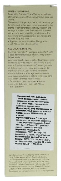 Mineralisches Duschgel mit Aloe Vera-Extrakt und Granatapfel- und Kirschblüten-Duft - Ahava Mineral Shower Gel — Bild N3