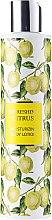 Düfte, Parfümerie und Kosmetik Körperlotion - Vivian Gray Refreshing Citrus Body Lotion