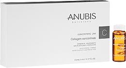 Düfte, Parfümerie und Kosmetik Feuchtigkeitsspendendes und straffendes Gesichtskonzentrat mit Kollagen - Anubis Collagen Concentrate Line