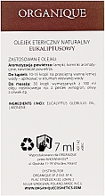 Ätherisches Eukalyptusöl - Organique Natural Essential Oil Eucalyptus — Bild N3