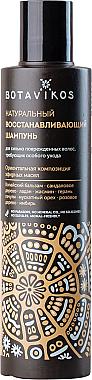 Natürliches Shampoo für geschädigtes Haar mit Kräuterölen - Botavikos Natural Repairing Shampoo — Bild N1