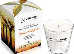 Düfte, Parfümerie und Kosmetik Duftkerze im Glas Madagascar Vanilla - Allvernum Home & Essences Candle