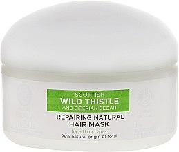 Regenerierende Haarmaske - Natura Siberica Alladale Repairng Natural Hair Mask — Bild N2