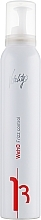 Düfte, Parfümerie und Kosmetik Anti-Frizz Mousse mit Feuchtigkeitsschutz - Vitality's We-Ho Frizz Control Mousse