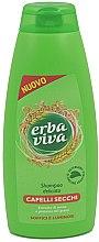 Düfte, Parfümerie und Kosmetik Shampoo für trockenes Haar mit Hafer und Weizen - Erba Viva Shampoo for Dry Hair