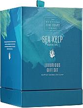 Düfte, Parfümerie und Kosmetik Körperpflegeset - Scottish Fine Soaps Sea Kelp Marine Spa Luxurious Gift Set (Körpercreme 75ml + Körperpeeling 75ml + Duschcreme 75ml + Seife 40g)