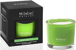Düfte, Parfümerie und Kosmetik Duftkerze im Glas Green Fig & Iris - Millefiori Milano Natural Candle Green Fig & Iris