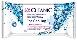 Düfte, Parfümerie und Kosmetik Feuchttücher mit kühlendem Effekt 15 St. - Cleanic Ice Cooling Wipes