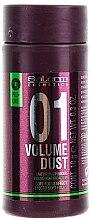 Düfte, Parfümerie und Kosmetik Mattierungspuder für mehr Volumen - Salerm Pro Line Volume Dust 01 Mattifying Powder