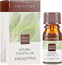 Ätherisches Eukalyptusöl - Organique Natural Essential Oil Eucalyptus — Bild N1
