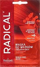 Düfte, Parfümerie und Kosmetik Regenerierende Haarmaske für geschädigtes Haar - Farmona Radical Mask