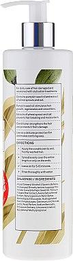 Haarspülung mit Kürbiskernöl - Vis Plantis Herbal Vital Care Conditioner Pumpkin Seed — Bild N2