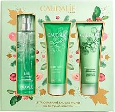 Düfte, Parfümerie und Kosmetik Duftset - Caudalie Eau Des Vignes Scented Trio (Körperspray 50ml + Duschgel 50ml + Körperlotion 50ml)