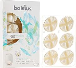 Düfte, Parfümerie und Kosmetik Tart-Duftwachs White Tea & Mint Leaves - Bolsius True Moods Collection In Balance White Tea & Mint Leaves Smart Wax System