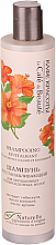Düfte, Parfümerie und Kosmetik Aufbau-Repair-Shampoo für gefärbtes und geschädigtes Haar - Le Cafe de Beaute Shampoo For Colored Hair