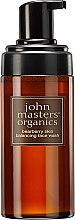 Düfte, Parfümerie und Kosmetik Gesichtsschaum mit Bärentraube - John Masters Organics Bearberry Oily Skin Balancing Face Wash
