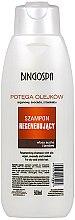 Düfte, Parfümerie und Kosmetik Regenerierendes Shampoo mit Argan-, Avocado- und Baobaböl für trockenes und sprödes Haar - BingoSpa Argan Shampoo