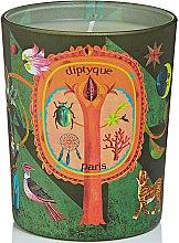 Düfte, Parfümerie und Kosmetik Duftkerze Protective Pine - Diptyque Woody Pine Candle