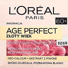 Düfte, Parfümerie und Kosmetik Tagescreme für Gesicht - L'Oreal Paris Age Perfect Golden Age Rosy Re-Fortifying Day Cream