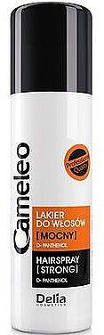 Haarspray Starker Halt - Delia Cosmetics Cameleo Hair Spray — Bild N1