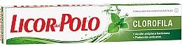 Düfte, Parfümerie und Kosmetik Erfrischende Zahnpasta - Licor Del Polo Clorofila Toothpaste