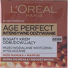 Düfte, Parfümerie und Kosmetik Intensiv nährende und aufbauende Tagescreme mit Manuka-Honig und Vitamin B5 - L'Oreal Paris Age Perfect Intensive Nutrition 60+ Regenerating Day Cream