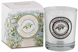 Düfte, Parfümerie und Kosmetik Duftkerze Sea Fennel - Panier Des Sens Scented Candle Refreshing Sea Fennel