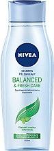 """Düfte, Parfümerie und Kosmetik Shampoo """"Balanced & Fresh Care"""" für fettiges Haar - Nivea Hair Balanced & Fresh Care Shampoo"""