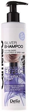 Anti Gelb Shampoo für blones, gebleichtes und graues Haar - Delia Cosmetics Cameleo Silver Shampoo — Bild N2