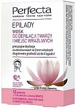 Düfte, Parfümerie und Kosmetik Enthaarungswachs für Gesicht und empfindliche Zonen - Perfecta Epilady