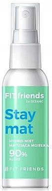 Gesichtsnebel mit Aloe Vera - AA Fit.Friends Stay Mat Hydro Mist — Bild N1