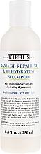Düfte, Parfümerie und Kosmetik Reparierendes und stärkendes Shampoo mit Moringa-Baumöl für schwaches und sprödes Haar - Kiehl`s Since 1851 Damage Repairing & Rehydrating Shampoo