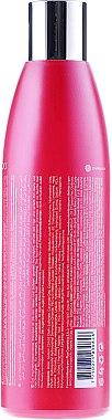 Farbschutz-Shampoo für coloriertes Haar - Kativa Quinua PRO Shampoo — Bild N2