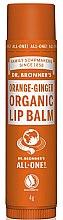 Düfte, Parfümerie und Kosmetik Lippenbalsam mit Orange und Ingwer - Dr. Bronner's Orange & Ginger Lip Balm