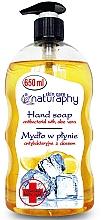 Düfte, Parfümerie und Kosmetik Antibakterielle Flüssigseife mit Zitrone und Aloe Vera - Bluxcosmetics Naturaphy Hand Soap