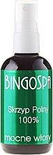 Düfte, Parfümerie und Kosmetik Haarspray mit Schachtelhalme - BingoSpa