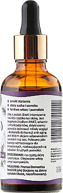 Pflaumensamenöl - Mohani Plum Seeds Oil — Bild N2