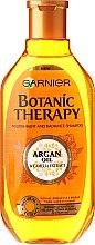 Shampoo für trockenes, stumpfes Haar mit Arganöl - Garnier Botanic Therapy Argan and Camelia Shampoo — Bild N1
