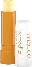 Düfte, Parfümerie und Kosmetik Pflegender Lippenbalsam mit Peelingeffekt - Sylveco Rich Exfoliating Lip Balm
