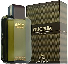 Düfte, Parfümerie und Kosmetik Antonio Puig Quorum - After Shave Lotion